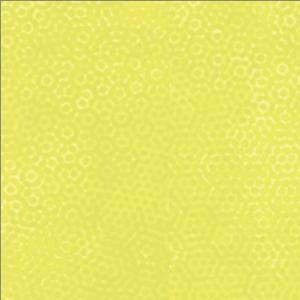 Citrus Dimples 1/2 yd