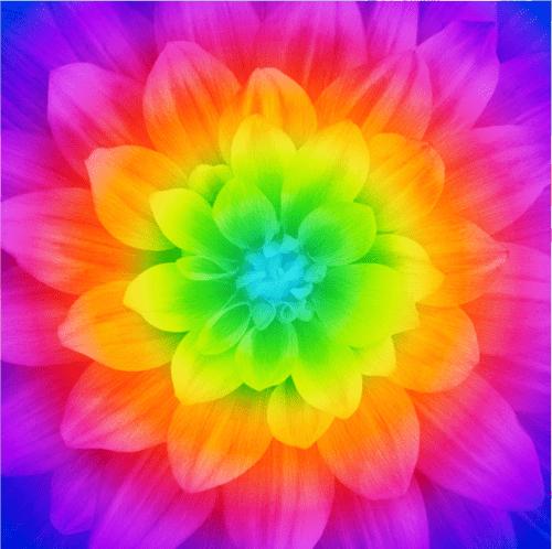 Prism Dream Big Flower Panel By Hoffman Fabrics