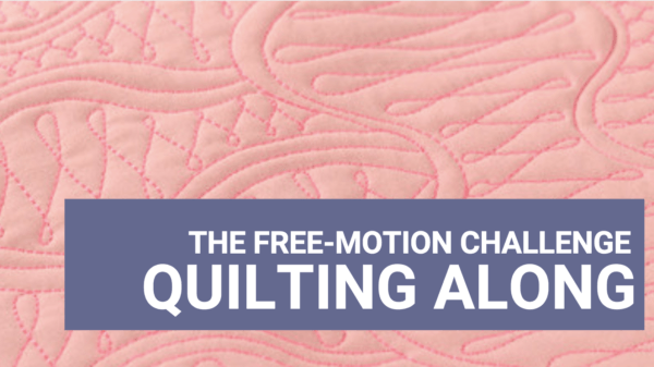 free-motion challenge quilting along with anglea walters
