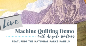 live machine quilting demo with angela walters