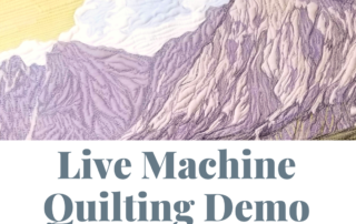 live machine quilting demo on youtube