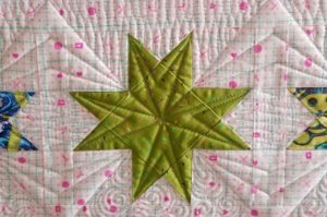 tula pink homemade quilt kit