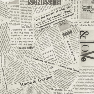 newspaper extra wide back fabric