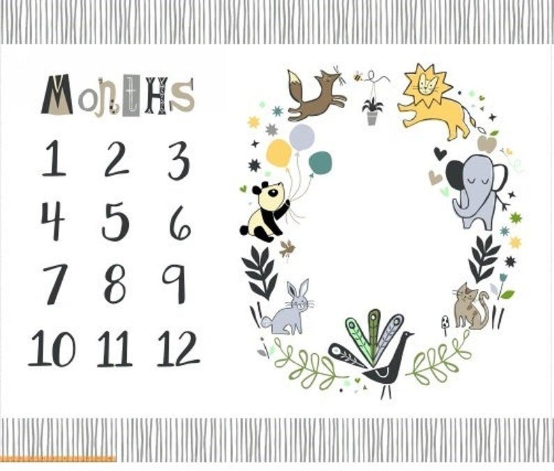 baby growth tracker panel