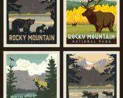 rocky mountain national parks pillow panel